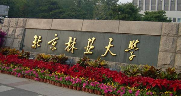北京林业大学校门