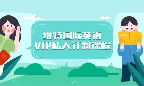 深圳龙岗布吉维特国际英语vip私人订制课程