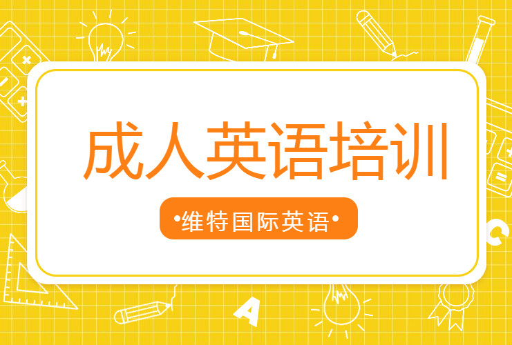 深圳龙岗南联维特国际英语培训机构