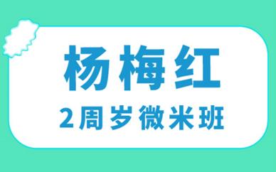 嘉兴龙鼎杨梅红2周岁微米美术培训