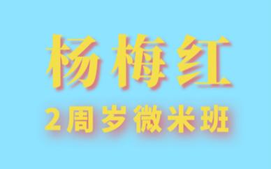 杭州萧山杨梅红2周岁微米美术培训