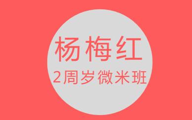 连云港利群杨梅红2周岁微米美术培训