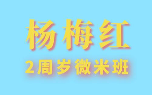 苏州吴中杨梅红2周岁微米美术培训