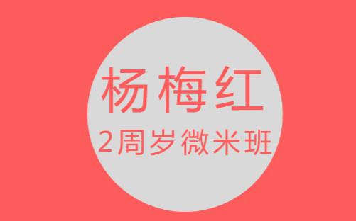 南通崇川杨梅红2周岁微米美术培训