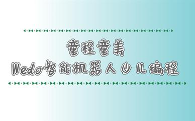 郑州普罗旺世童程童美Wedo智能机器人编程