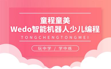 广州万胜围童程童美Wedo智能机器人编程