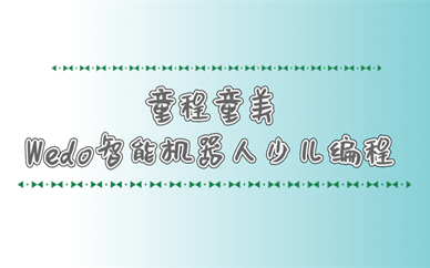 深圳罗湖童程童美Wedo智能机器人编程