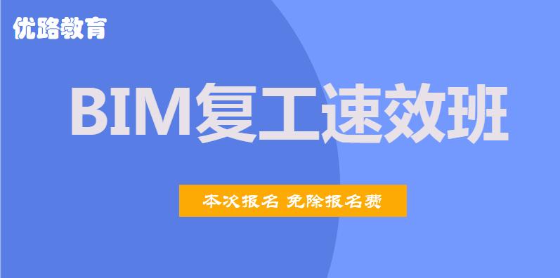 上海徐汇2020年BIM复工速效班
