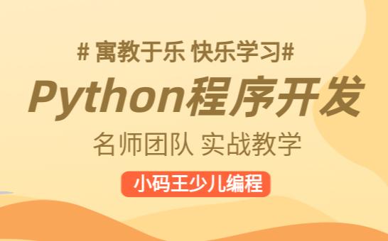 南京江宁同曦小码王Python程序开发编程课