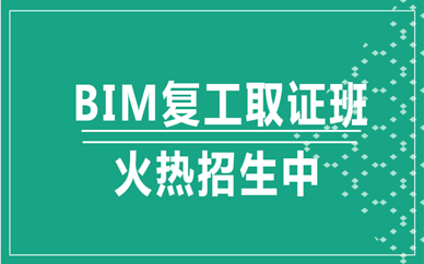 河源BIM2020年考试时间在什么时候?