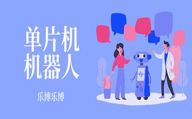 郑州金水经七路乐博乐博儿童单片机课程