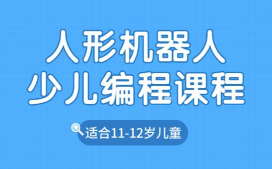 重庆沙坪坝乐博人形机器人编程班