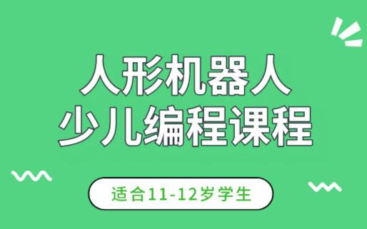 重庆渝北乐博11-12岁人形机器人编程课