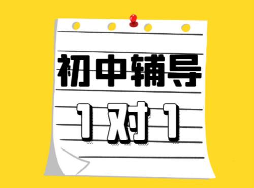 郑州金水有初中家教辅导班吗