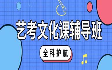 南京秦学艺考文化课程培训