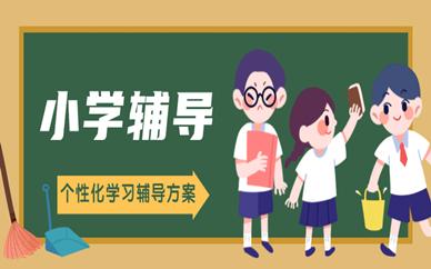 徐州秦学小学补习班