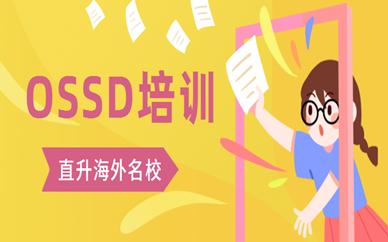 衡阳雁峰环球OSSD同步课程
