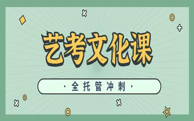 鹤壁淇滨金博艺考文化课补习班