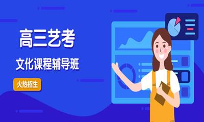重庆沙坪坝高三艺考文化课程辅导