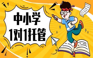 惠州惠阳金博中小学1对1托管班