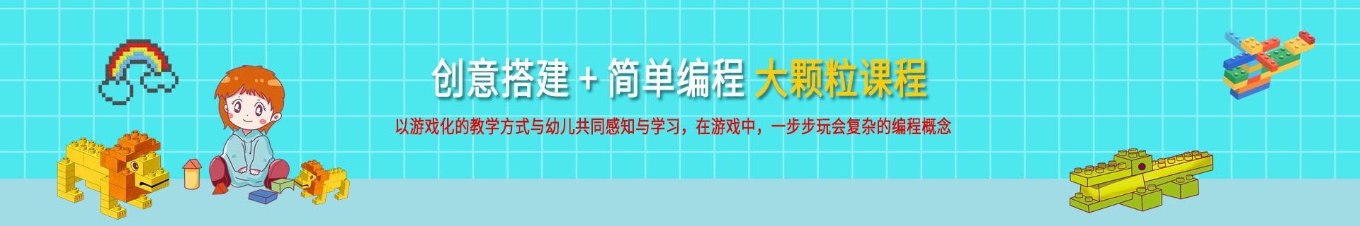 重庆沙坪坝区小龙坎正街乐博乐博少儿编程