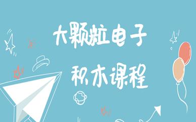 天津南开幼儿大颗粒电子积木课程