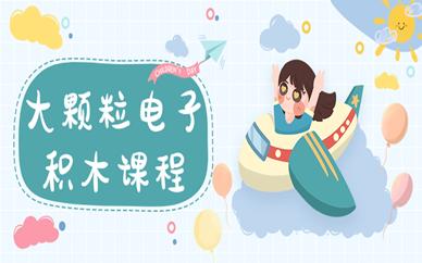 重庆沙坪坝乐博大颗粒积木编程学习班