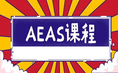 淄博新航道AEAS课程辅导