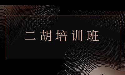 上海徐汇秦汉胡同二胡培训