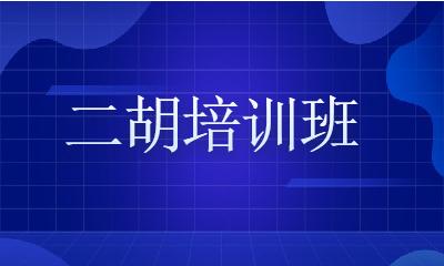 上海闵行古美二胡培训班
