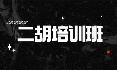 上海浦东世纪秦汉胡同二胡课程