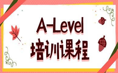 杭州朗阁ALevel留学课程